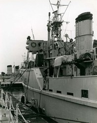 Ton Class minesweepers of the Vernon Squadron Feb 1957